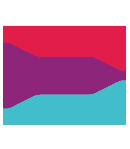 Raptors Technologies Flag